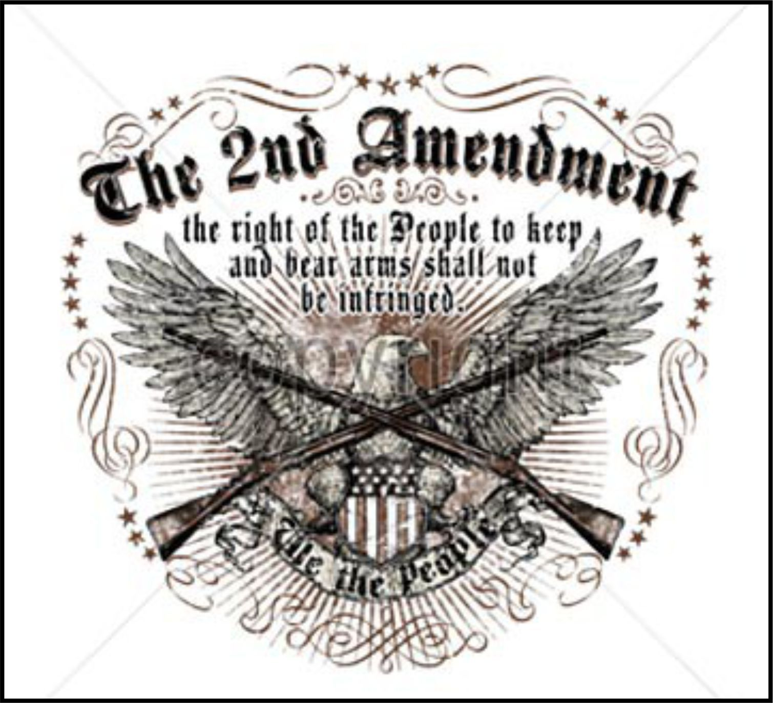 Image result for pics of 2nd amendment