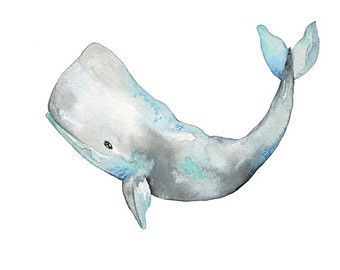 Blue Whale Watercolor Painting  10 x 8  Giclee Print  11 x 8.5  Ocean Sealife Pa…