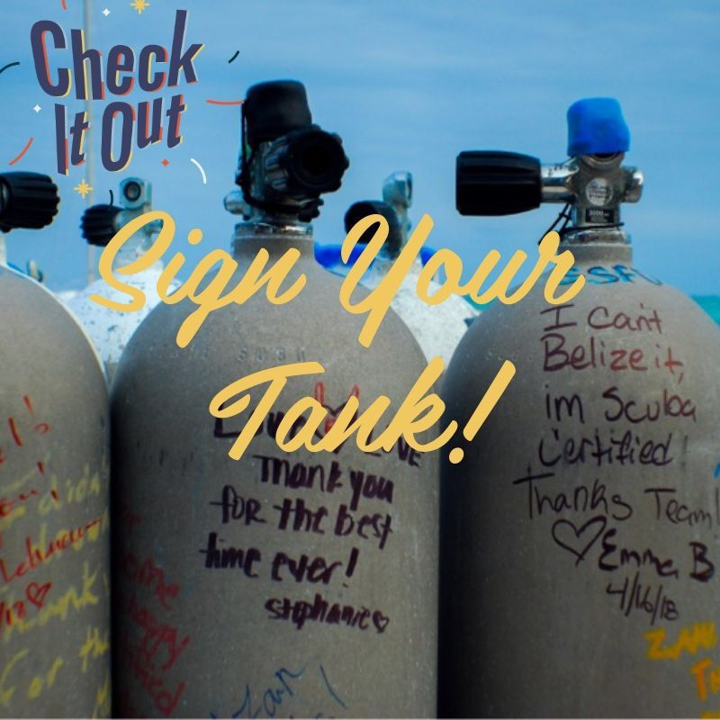 Sign Your Tank Get Any Dive Certification With Us And You Will Sign