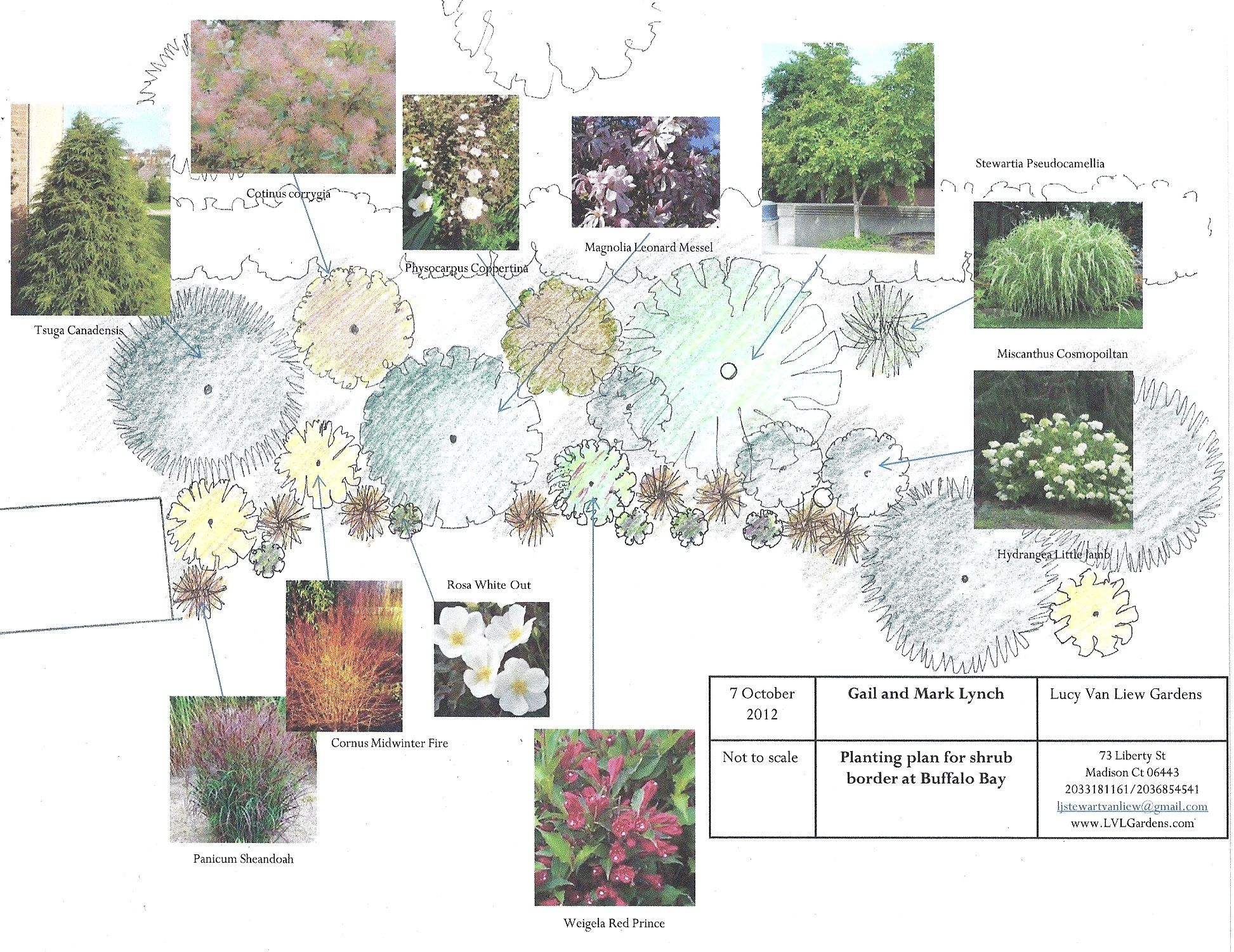 Design For Shrub Border Planting Design Plan Simple Garden Designs Plant Design