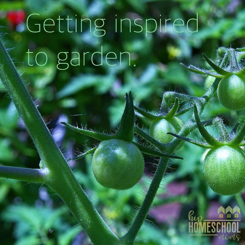 10 Creative Vegetable Garden Ideas: 10 Herbs That Repel Garden Pests