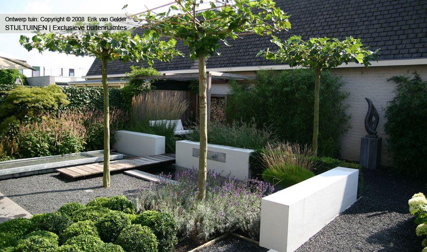 Moderne tuin groen buxus vijver dakplataan bamboe waterelement