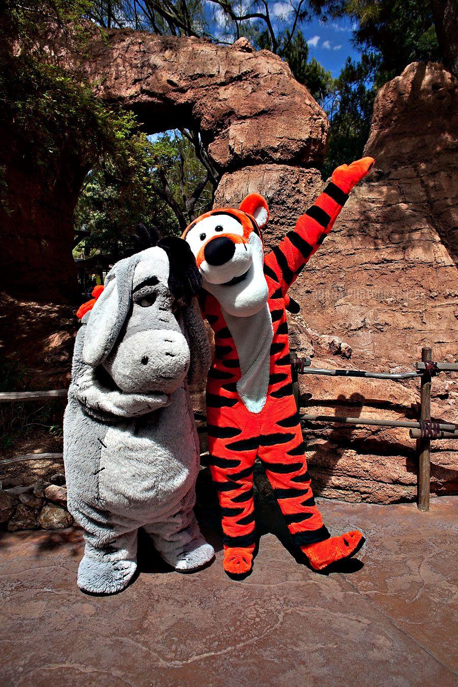 Disneyland Eeyore And Tigger Official Character