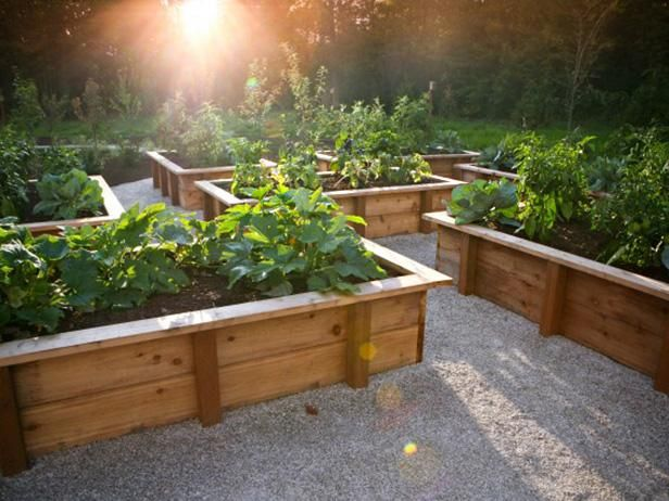 Raised Garden Beds Can Be Made From A Variety Of Materials Create Your Own Custom Raised Garden With Backyard Garden Design Diy Raised Garden Backyard Garden