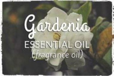 Gardenia Essential Oil Fragrance Oil Gardenia Essential Oil