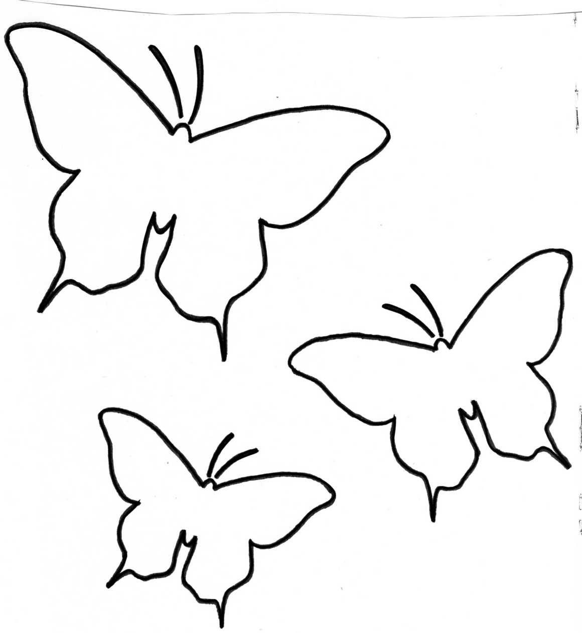 Patron papillon fleurs de soie gabarit papillon - Papillon dessin a imprimer ...