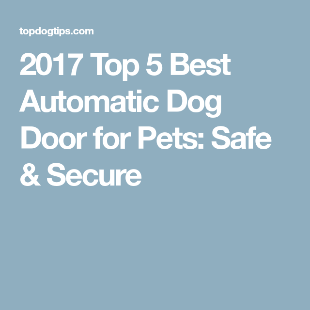2017 Top 5 Best Automatic Dog Door For Pets Safe Secure For Our
