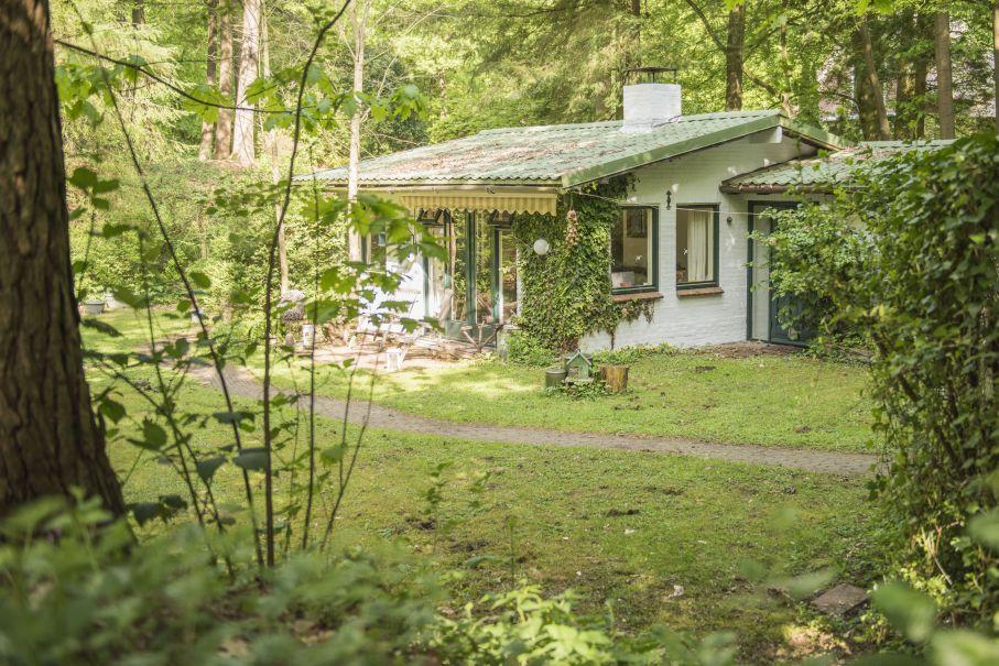Natuurhuisje 30707 - vakantiehuis in Emst