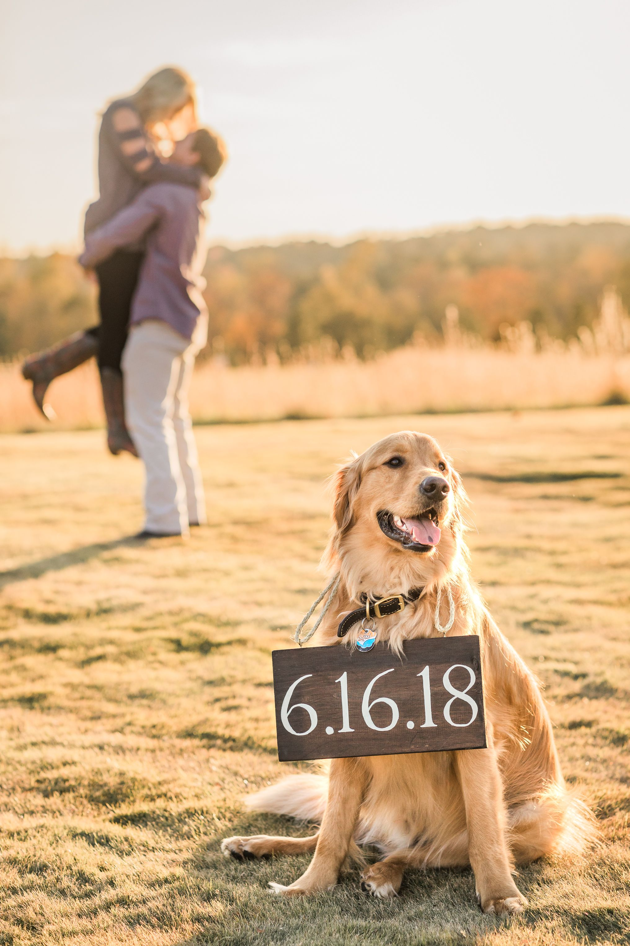 Save The Date With Dog Golden Retriever Russel Lands Lake Martin