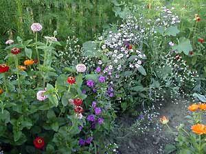 le jardin de curé | déco brico maison et jardin | Pinterest ...