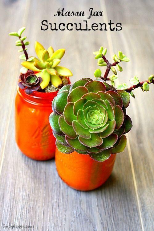 Easy do it yourself mason jar succulents perfect for end of the easy do it yourself mason jar succulents perfect for end of the school year gifts solutioingenieria Gallery