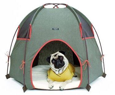 tent dog house  sc 1 st  Pinterest & tent dog house | Dog Daze | Pinterest | Dog houses Dog and Pup