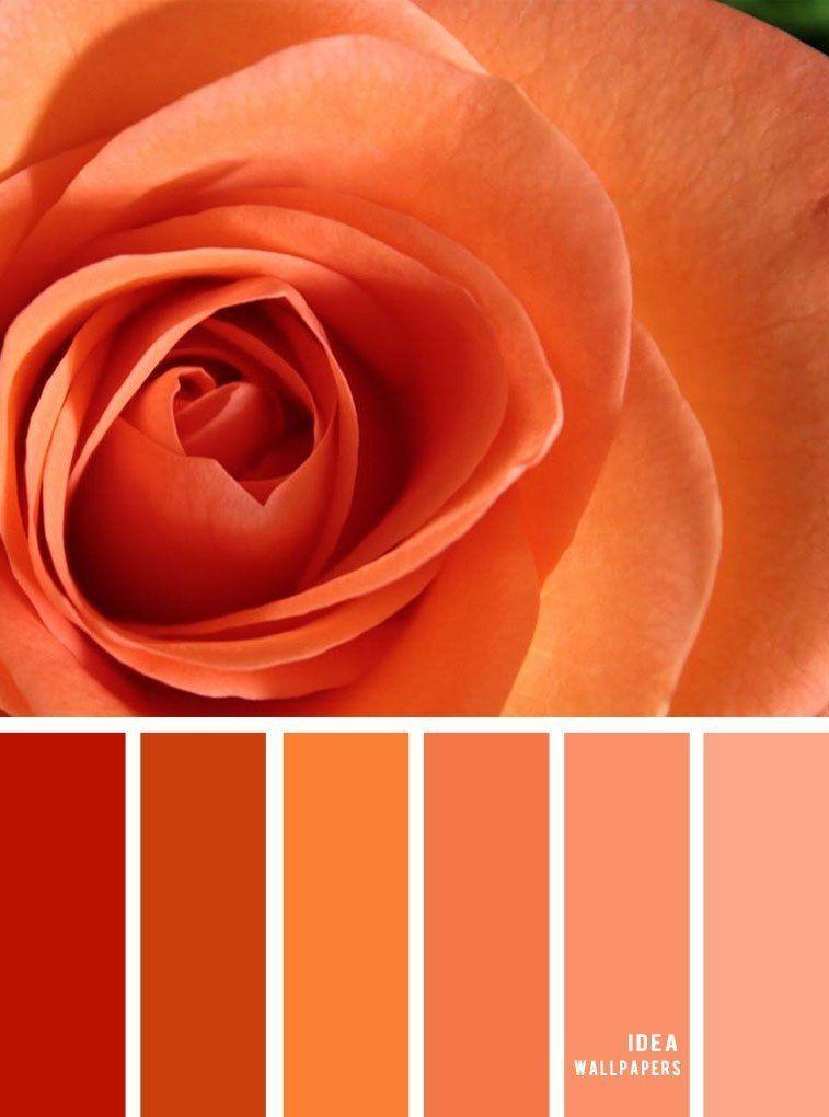 Farbpalette Fur Orange Und Pfirsich Farbpalette Fur Pfirsichfarben Pfirsichfarben Peach Color Palettes Orange Color Palettes Decor Color Palette