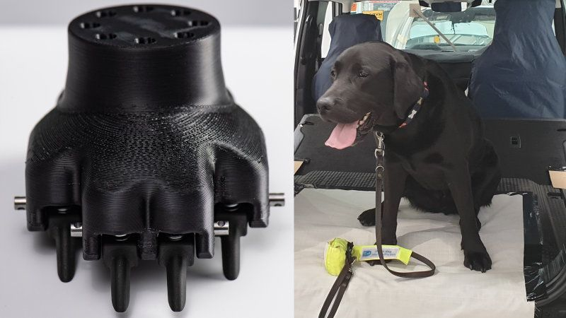 2020 Land Rover Defender Paint Tested With 3d Printed Dog Paw