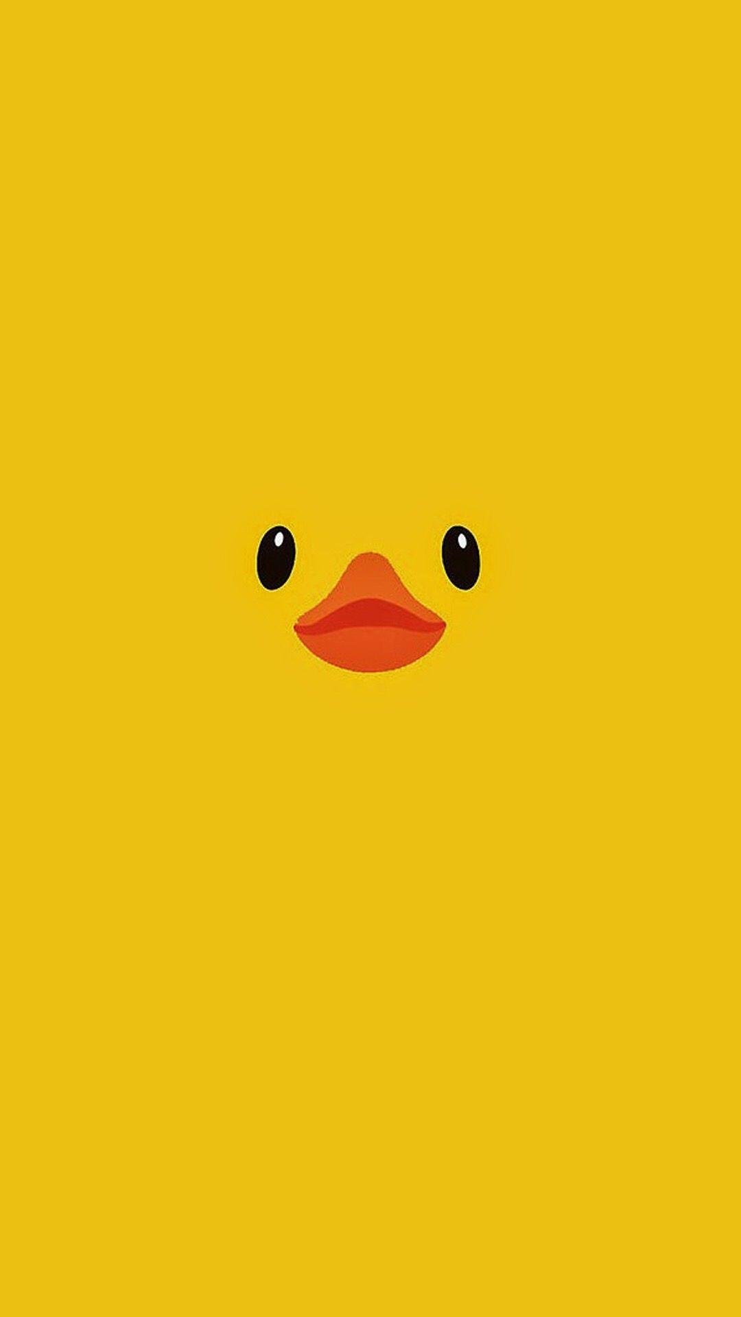 KP KP на доске Ducks ...