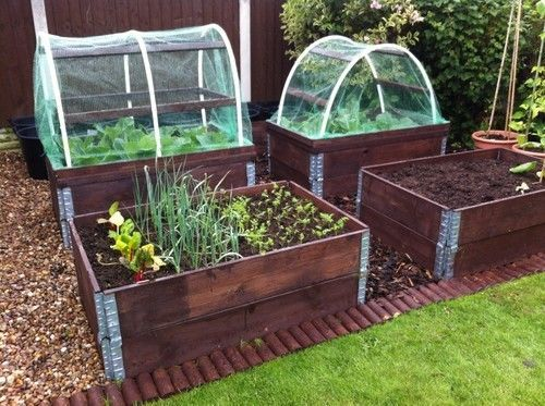 Pallet Collar Raised Beds Vegetable Garden Raised Beds Raised
