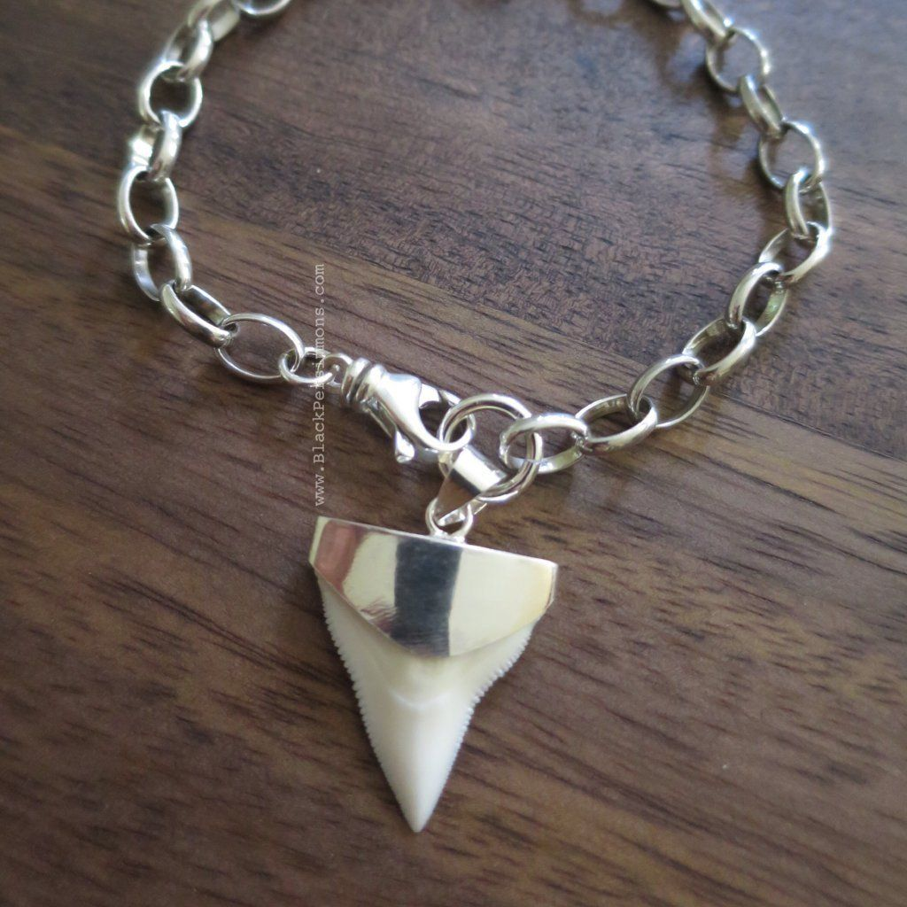 Shark tooth fossil prionace glauca pendant bracelet solid 925 shark tooth fossil prionace glauca pendant bracelet solid 925 sterling silver aloadofball Image collections