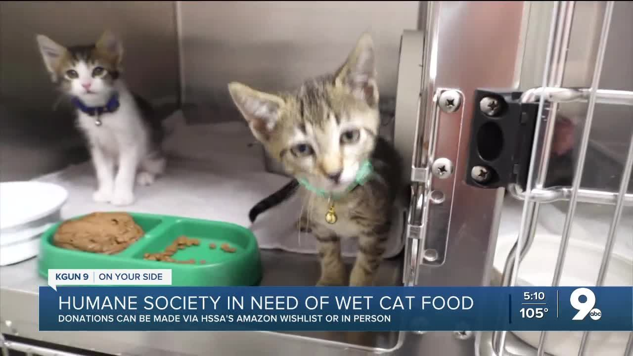 We Went Through Our Wet Food Very Quickly Because Of All The Kittens In 2020 Kittens Wet Cat Food Wet