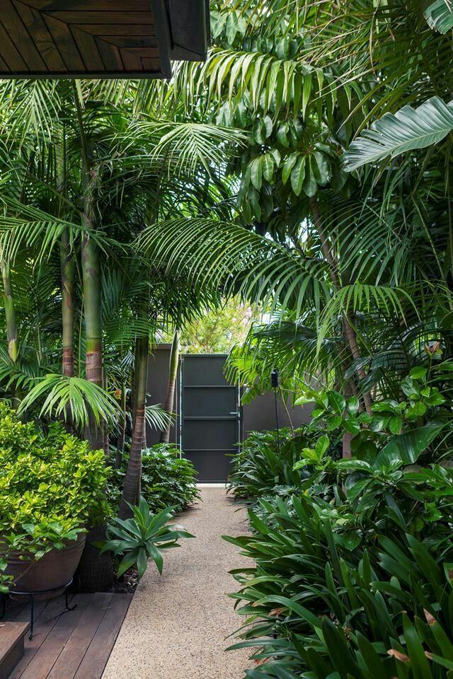 A Tropical Garden In The Heart Of Melbourne Gardening Garden Diy Home Flowers Roses Nature Tropical Garden Design Tropical Landscape Design Bali Garden