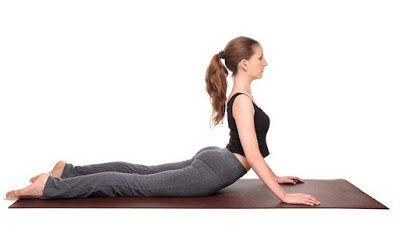 cobra pose  basic yoga exercises  cobra pose yoga yoga