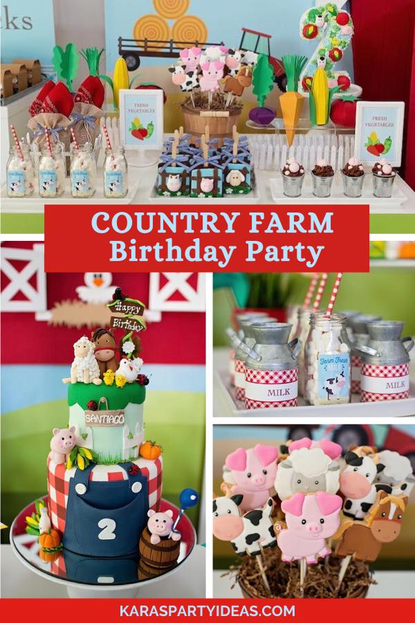 430 Farm Barnyard Party Ideas Farm Party Barnyard Party Barnyard Birthday