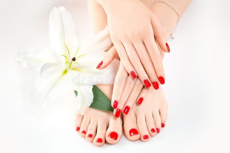 Luxury Nail Care Manicure And Pedicure Skin Care Salon Manicure