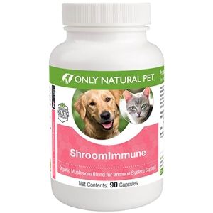Reishi For Dog And Cats