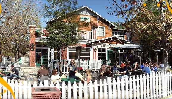 One Of The Best Places To Eat And Cheer On Gators Swamp Restaurant Gainesville Fl
