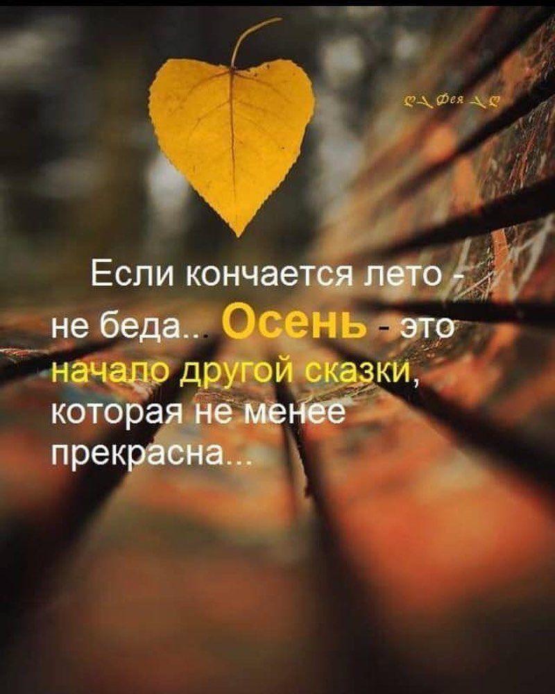 Совсем скоро начало новой сказки. Готовы ?! #сказка #осень #скороосень  #люблюосень #йогаосень% | Позитивные цитаты, Вдохновляющие цитаты,  Вдохновляющие фразы