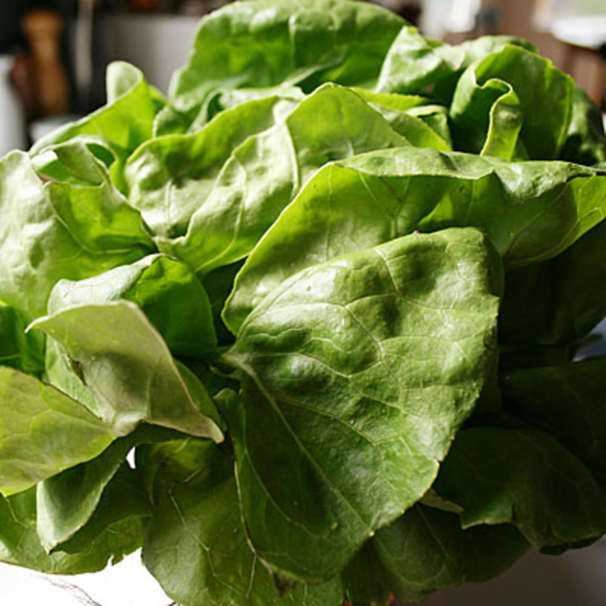13 Best Foods For Crohns Disease Pinterest Lettuce Trials And