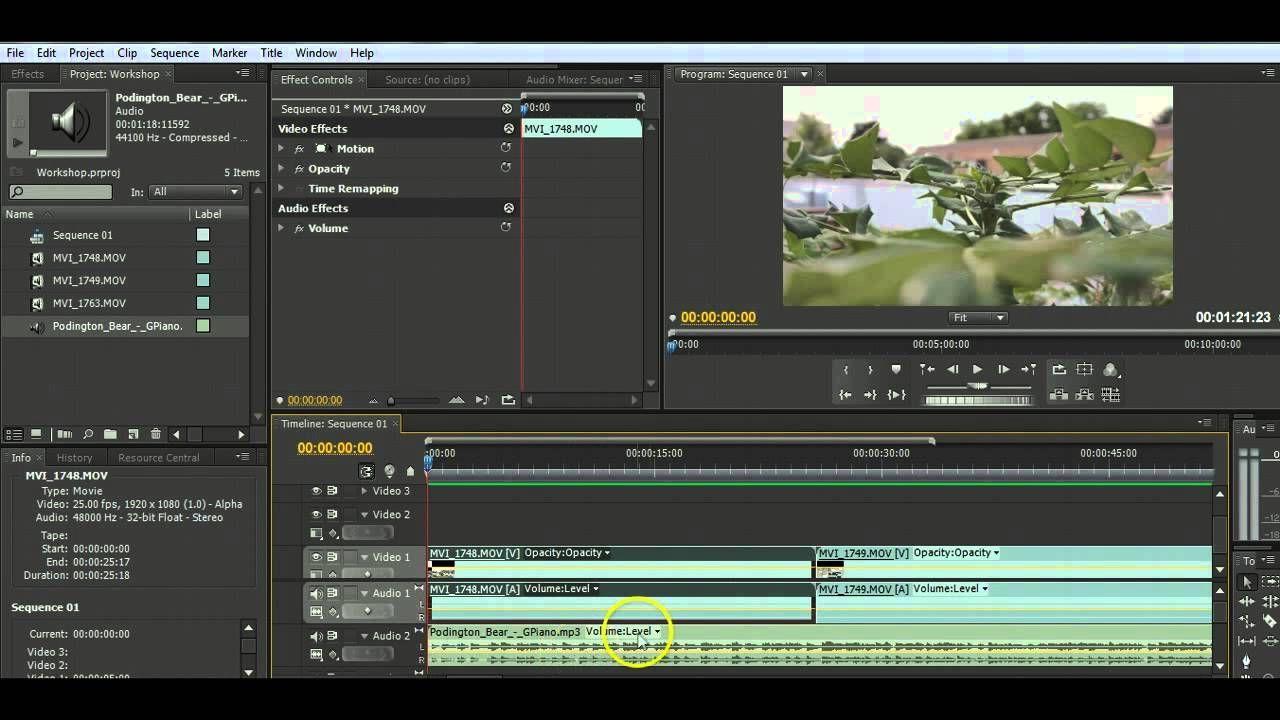 Introducing Adobe Premiere Pro Cs4 Basic Video Editing Tutorial Free Video Converter Best Photo Editing Software Video Editing