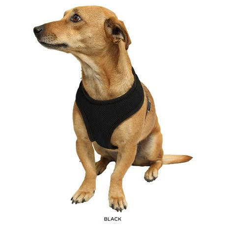 Oxgord Pet Control Soft Mesh Harness With Safety Strap Vest For Dogs Cats Assorted Colors At 45 Savings Off Retail Pets Dog Harness Dog Cat
