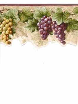 "bc1581106 from design by color purple is a 6"" laser cut wallpaperbc1581106 from design by color purple is a 6\"" laser cut wallpaper border with burgundy and green grapes"