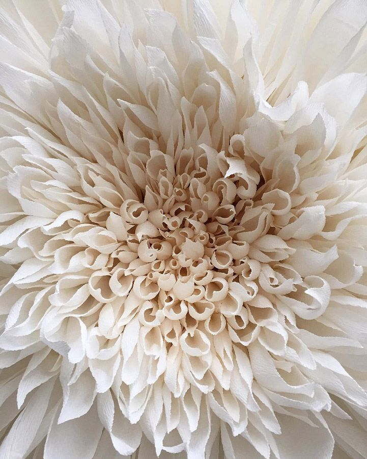 Meticulously Crafted Paper Flowers by Artist Tiffanie Turner