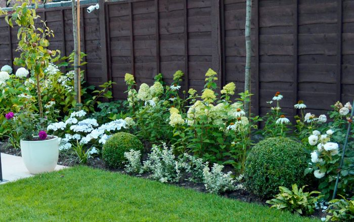 Love your garden get the formal look from episode 7 for Formal front garden ideas