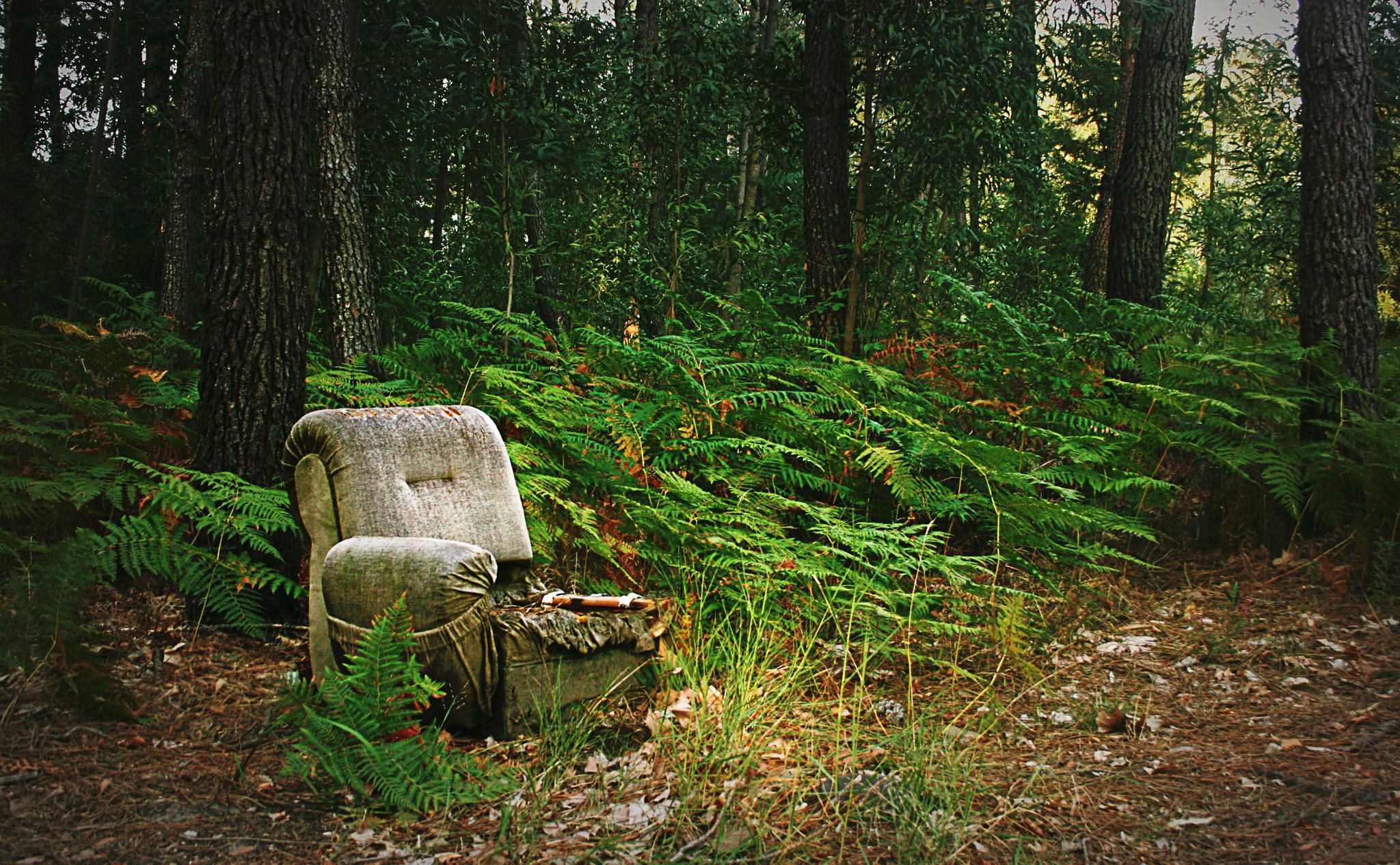 First Seat by Félix Pagaimo on 500px