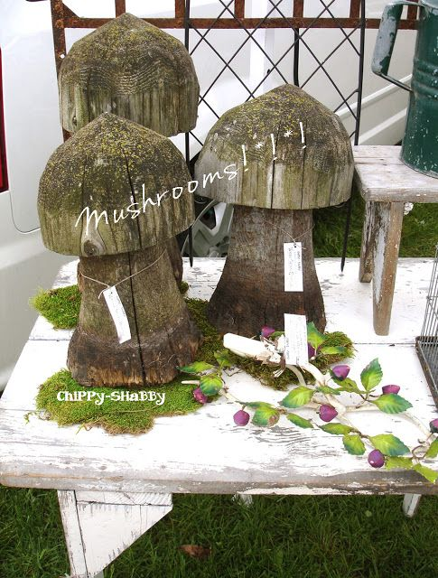 Funk Wood Mushrooms For The Garden S*O*L