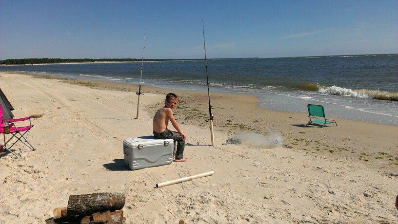 Tyran fishing for rays