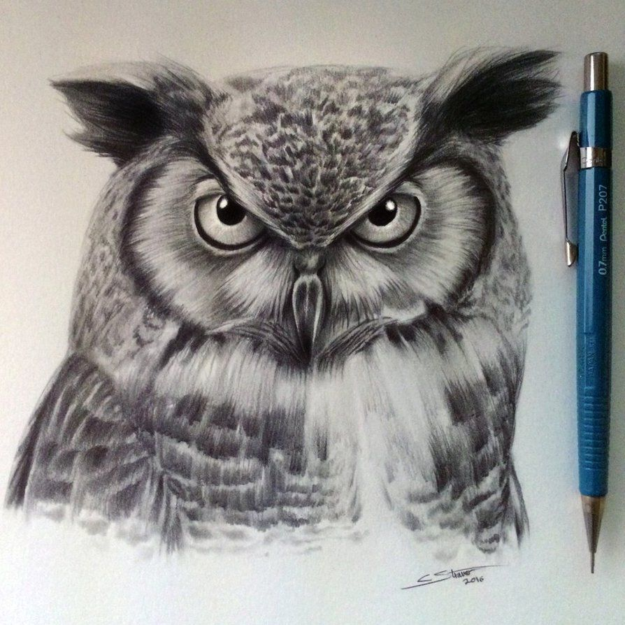Owl Drawing by LethalChris | animals | Pinterest | Dibujos realistas ...