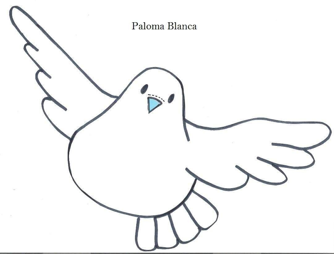 paloma blanca searching baby crafts avatar santos october dove drawing free coloring pages easy to draw