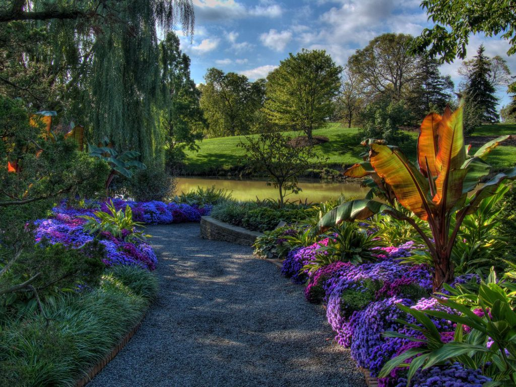 A Colorful Array Of Plants And Flowers Adorn The Pathway 400 x 300