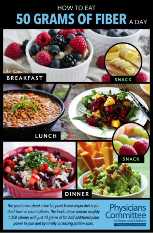 protien and fat deficency diet plan