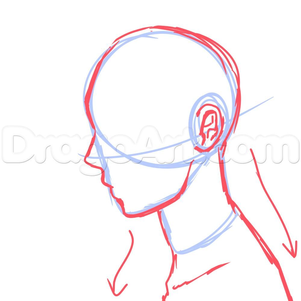 Side View Male Anime Face Drawing Tutorial Anime Face Drawing Side Face Drawing Drawing Tutorial Face
