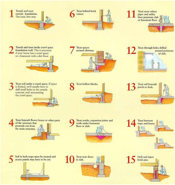 Anti termite construction pesquisa google arcgroupdesighnlda anti termite construction pesquisa google termite controlpest solutioingenieria Images