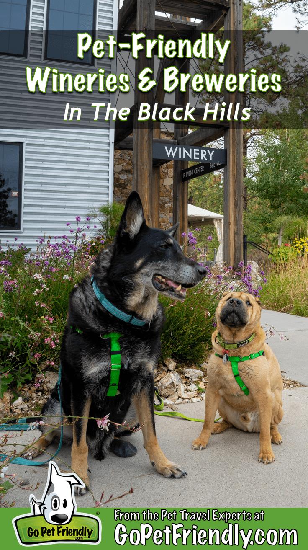 A Dog S Guide To Huntsville Alabama Via Ihearthsv Com Tiki Needs That Pinterest