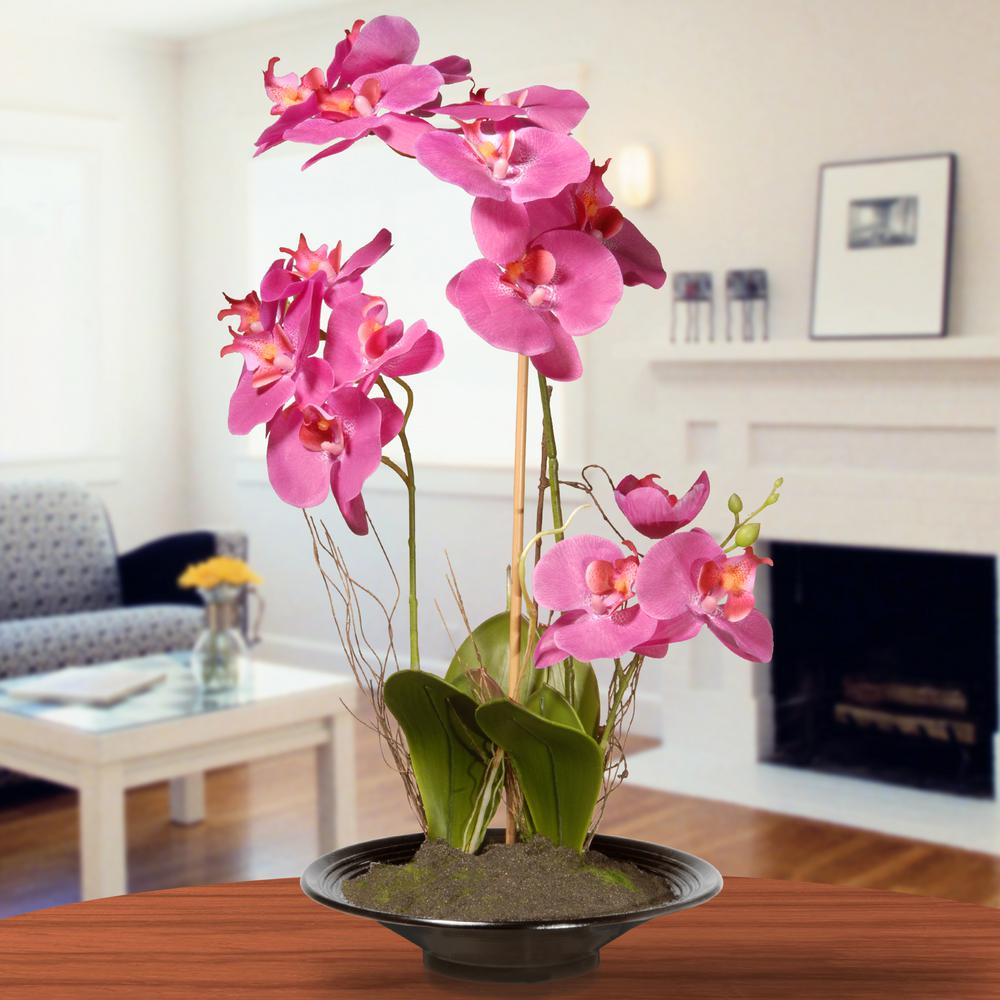National Tree Company 17 In Pink Orchid Flowers In 2020 Orchid Flower Orchids Pink Orchids