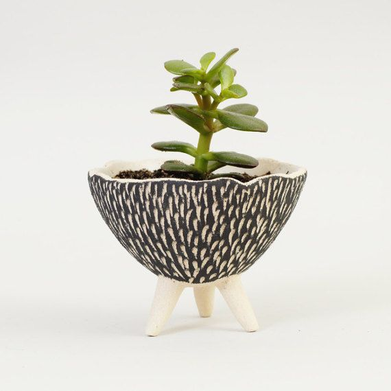 Black And White Pottery Planter Textured Ceramics Ceramic Plant