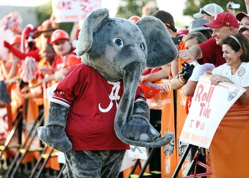 University Of Alabama Mascot Big Al Alabama Crimson Tide