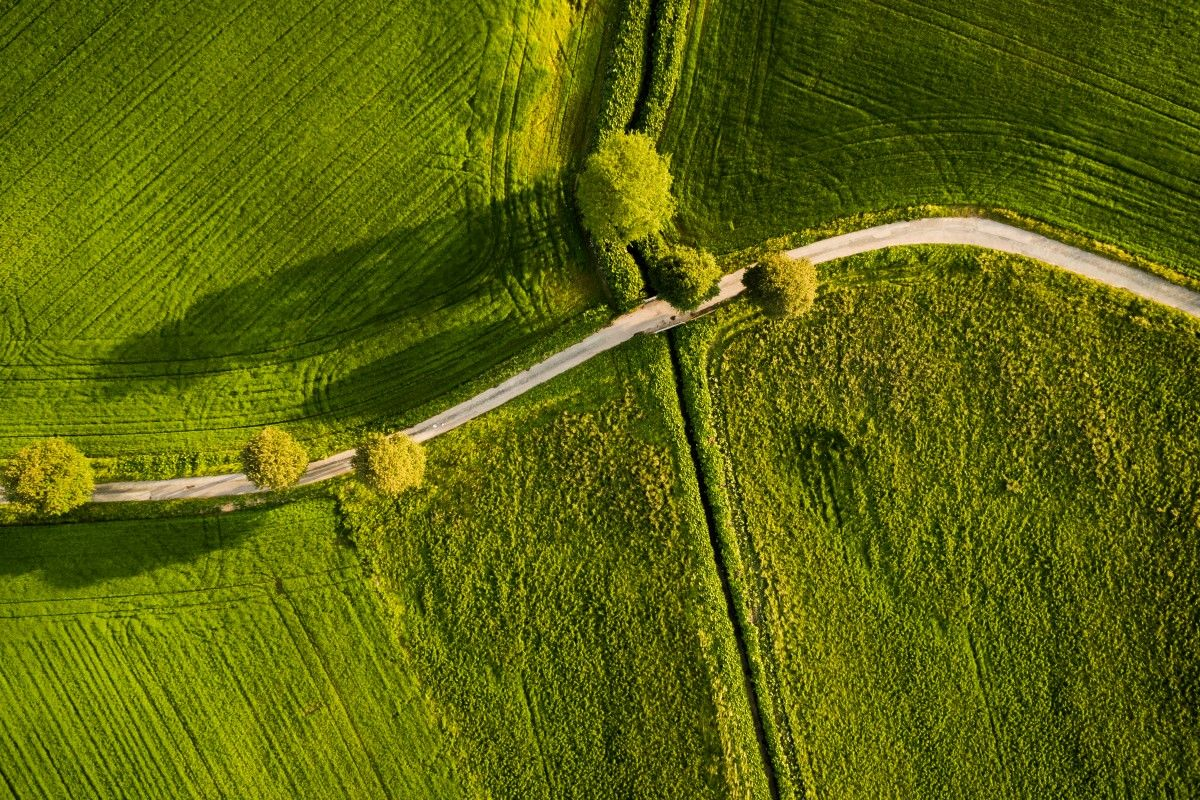 Curved Road Beautiful Denmark By Drone Dji Photography