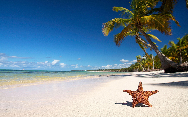 Tropical Beach Wallpapers Beach Wallpaper Beach Background Tropical Beaches